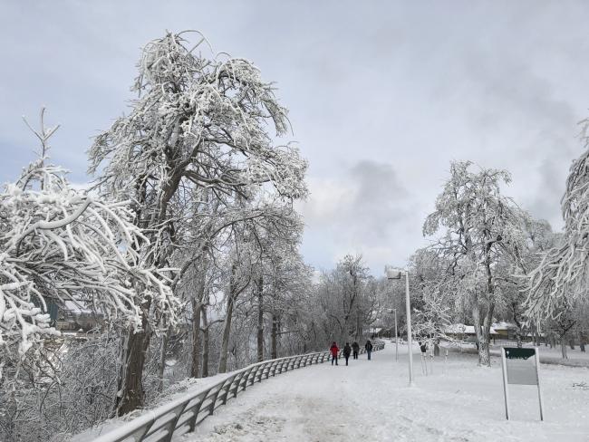 Photo Dec 31  12 31 27 PM
